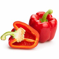 Capsicum | Superfoods You Need to Eat | Australian Native Botanicals